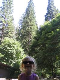 Yosemite2006_135